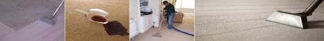 Professional Carpet Cleaning Services, End of Lease Cleaning Sydney - Carpet Cleaners